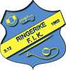 Ringerike Friidrett